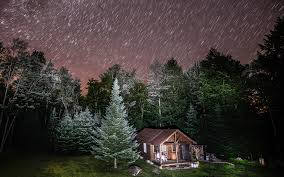 Forest Home Decor by Trees At Night With Stars Cabin Night Forest Trees Stars