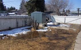 Drainage Problems In Backyard - lot grading problems city of edmonton