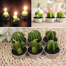 how long do tea lights burn 6pcs tealight candles long burning unscented succulent mini tea