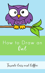 how to draw an owl tuxedo cats and coffee