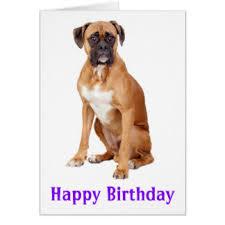 boxer dog cards greeting u0026 photo cards zazzle