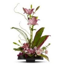 flower delivery st louis flowers st louis discounted flower delivery st louis