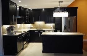 Contractor Kitchen Cabinets Top Kitchen Cabinets Manufacturer Tehranway Decoration