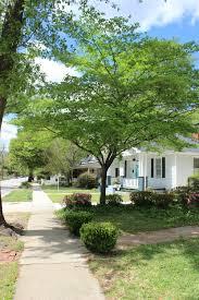 architecture earlewood neighborhood img 0484 jpg