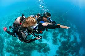 scuba diving internships blue water diving gran canaria