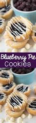 blueberry pie cookies crazy for crust