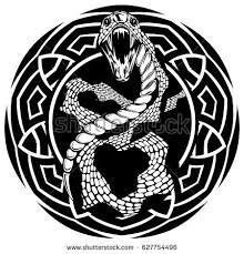 abstract vector illustration black white snake stock vector