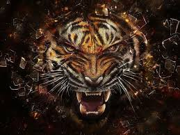 256 best animals wallpapers images on pinterest animal wallpaper