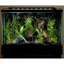 marineland aquatic plant led lighting system w timer 48 60 marineland single bright led lighting system 18 24 inch http