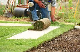 lawn care service irving r u0026r grass cutting service 469 766 5815