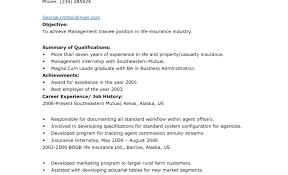 handyman resume resume exle entry level programmer resume handyman resume