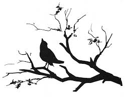 bird on a branch drawing at getdrawings com free for personal use