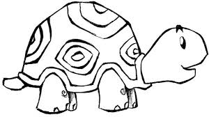 coloring pages of animals in their habitats little turtle cartoon animals coloring pages for kids printable