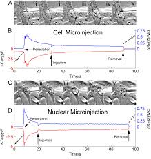 electrical detection of cellular during microinjection