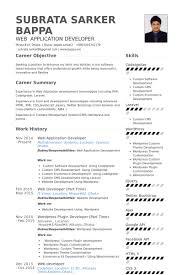 Front End Developer Resume Sample by Application Developer Resume Resume Example