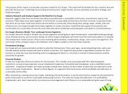 summary report template template for summary report high quality templates