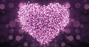 flying pink flower petals lovely