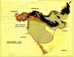 Map Of Southwest Asia by The Soil Maps Of Asia Display Maps