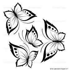 pretty butterflies drawings beautiful drawing designs