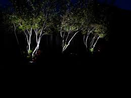 Led Landscape Tree Lights 30 Unique Outdoor Landscape Lighting For Trees Outdoor Landscape