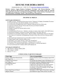 Architecture Resume Sample by Architect Resume Summary Virtren Com