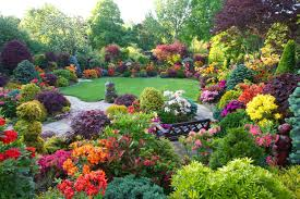 inspirations houses with flowers and garden pictures or by house