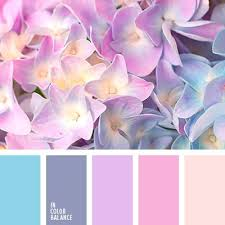 pink is a combination of what colors 33 best pink and blue images on pinterest color palettes