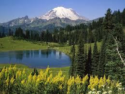 Washington national parks images Nature natural beauty mount rainier national park washington jpg