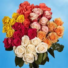 global roses assorted roses global