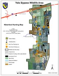 Dove Migration Map Yolo Bypass Wildlife Area Hunting Rules And Tips Legal Labrador