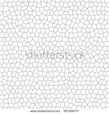 abstract white texture background white cell stock vector