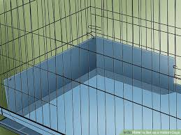 Rabbit Hutch Set Up How To Set Up A Rabbit Cage 15 Steps With Pictures