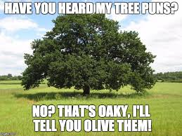 Tree Puns Just Branching Out A Imgflip