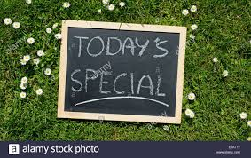 today u0027s special written on a chalkboard in a natural area on a