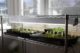 indoor grow lights peeinn com