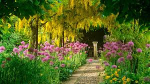house with flower garden alices inspirations also home gardens