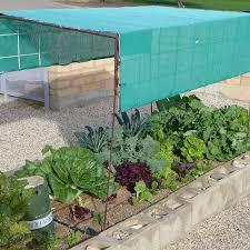 Veggie Garden Ideas Desert Gardening Ideas For Your Veggie Garden
