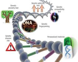 whole genome sequencing revolutionary medicine or privacy nightmare