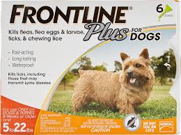 frontline plus flea u0026 tick treatment for dogs up to 22 lbs 6