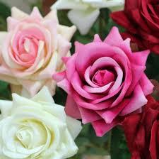 xmas flower decorations decorative flowers