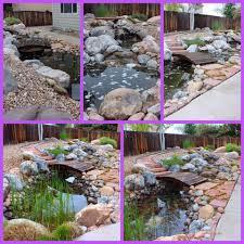 andy u0027s pond supply garden center denver colorado facebook