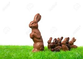 chocolate rabbits of chocolate bunnies on the way a fresh meadow stock