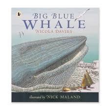big blue whale nature storybooks natural history museum online