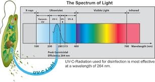 uv light for well water cost water treatment jackson water well