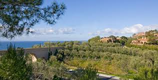 contact us the resort at pelican hill