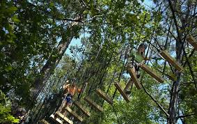callaway gardens fantasy lights groupon treetop adventure zip lining in ga callaway resort gardens