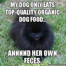 Dog Food Meme - my dog only eats top quality organic dog food annnnd her own