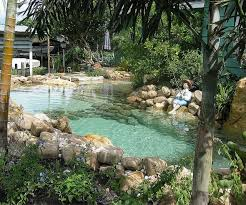 94 best swimming ponds images on pinterest natural pools