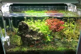 full spectrum light for plants archaea ultra gro full spectrum aquatic plant led light aqua