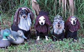Duck Dynasty Halloween Costumes Dachshund Halloween Costumes U0026 Contest Results Crusoe Dachshund